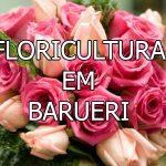 Floricultura em Barueri